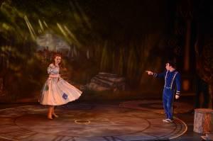 Cinderella Final Selection 12