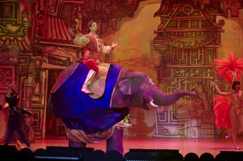 4th December 2014  Aladdin, Hull New Theatre